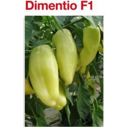 Papryka Dimentio 500 n