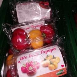 Papryka pomidorowa Giallo...
