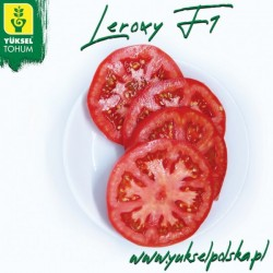 Pomidor Leroxy F1 50 n