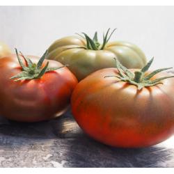 Pomidor Bronson F1 250 n.