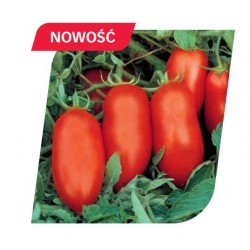Pomidor Herdon 1 000 n.